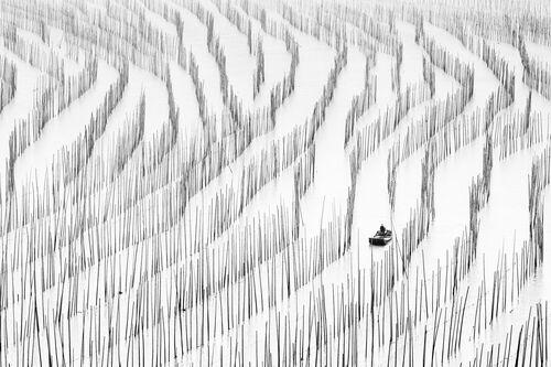 Seaweed Farms - Zay Yar Lin - Photographie