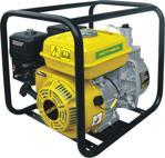 Rother RTR030 Benzinli Su Pompası