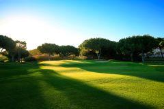 Dom Pedro Pinhal Course