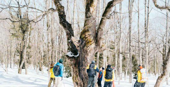 『遊学キャンプ 2021年冬』開催レポート