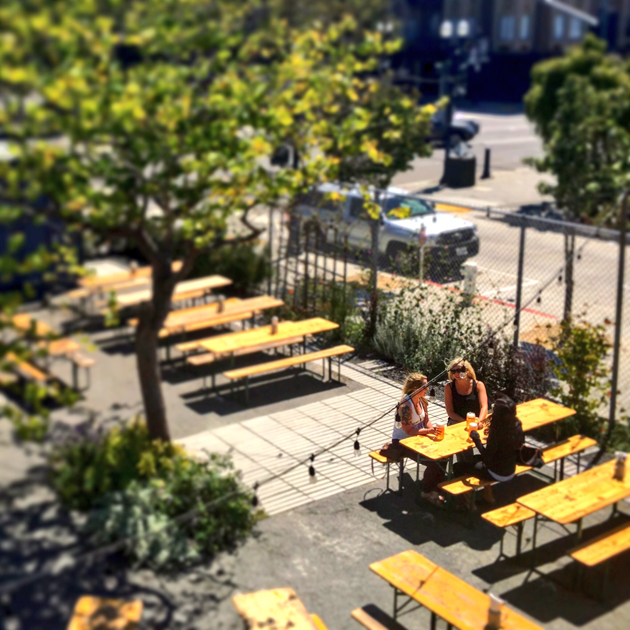 10 Must Try Beer Gardens In San Francisco And Oakland Zagat