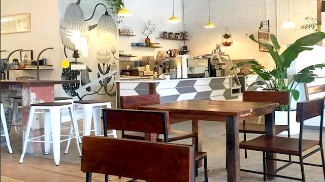 5 Things To Know About Stowaway Coffee Kitchen Zagat