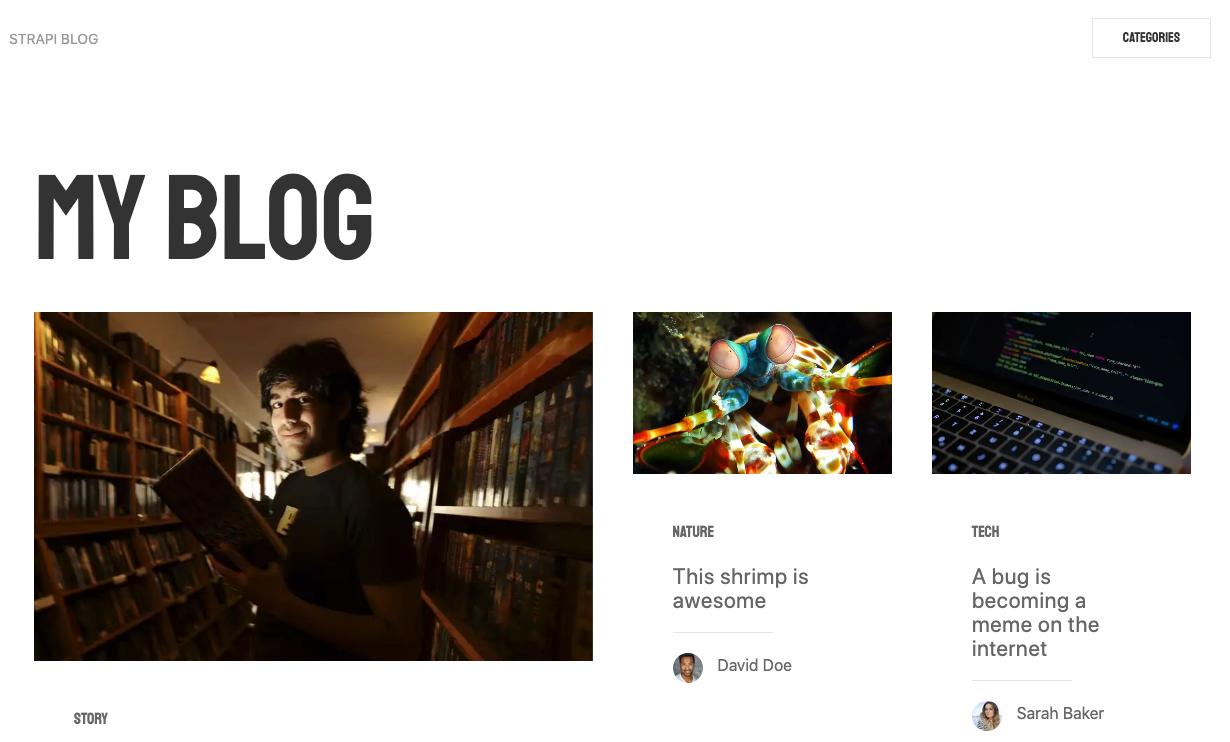 strapi-blog変更前