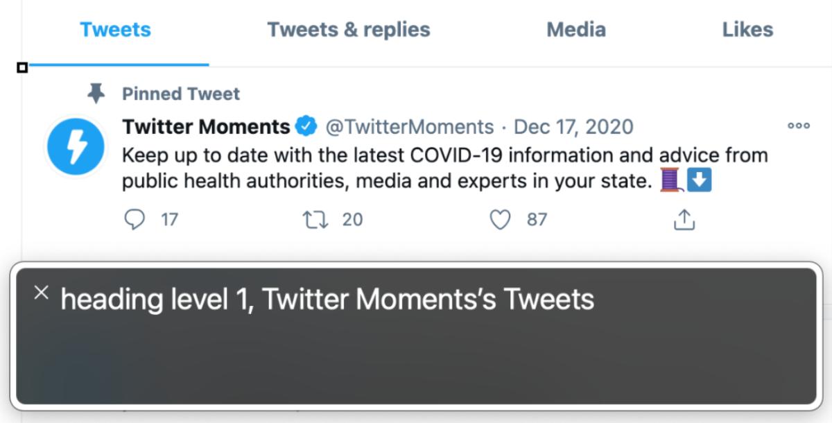 VoiceOverでTwitterのタイムラインを表示し、隠れている見出し要素をフォーカスしているスクリーンショット