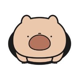 kazuwombat
