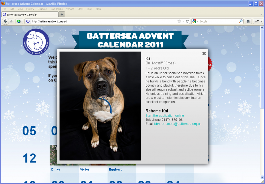 Battersea Dogs & Cats Home - A pet per day!