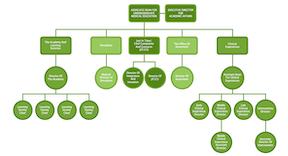 College Organization Tree