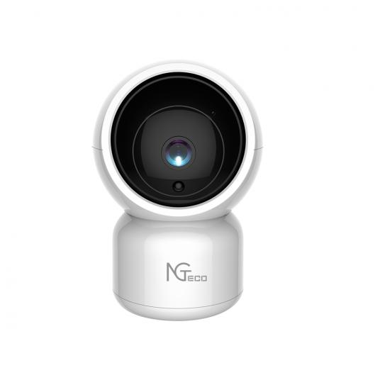 NG-C100 Dome Security Camera