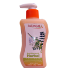 Baba Ramdev Patanjali Anti Bacterial Herbal Handwash 250 ml