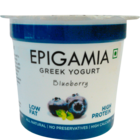 Epigamia Blueberry Yogurt 90 g