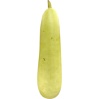 Fresh Bottle Gourd 1 pc