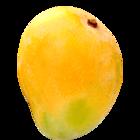 Fresh Mango Alphonso 1 Kg