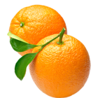 Fresh Orange Navel 1 pc
