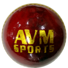 AVM Sports Paxton Leather Cricket Ball 1 Pc
