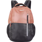 Safari Stint Back Pack Black 1 pc
