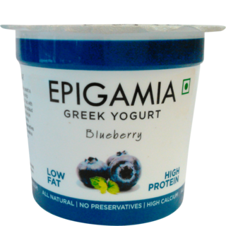 Epigamia Blueberry Yogurt