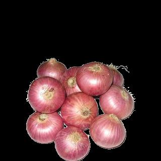 Fresh Onion Red