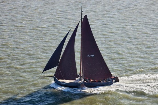 Houthaven Fleet | 12 to 25 persons