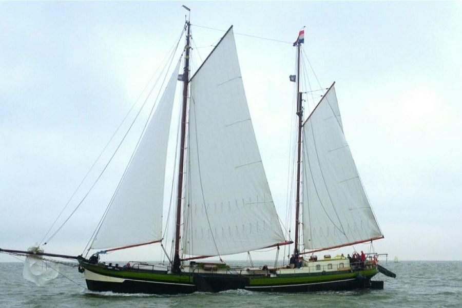 Detail image of Wilhelmina