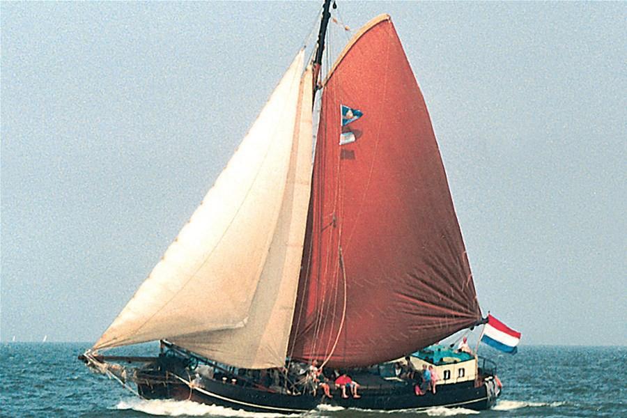 Detailbild von Noordster