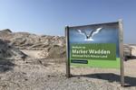 Kleine afbeelding 7 van Marker Wadden Expeditie (vanaf 40 pers)