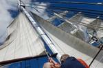 Kleine afbeelding 3 van Zeilen door het windmolenpark in de Noordoostpolder