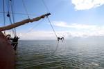 Miniaturansicht 8 von Highlight Friesische Seen
