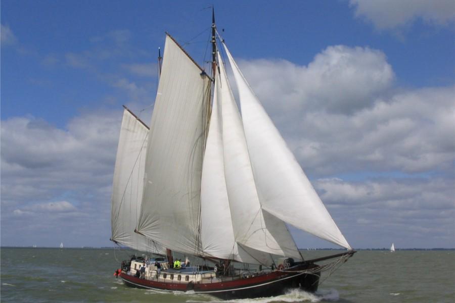 Detail image of Eenhoorn