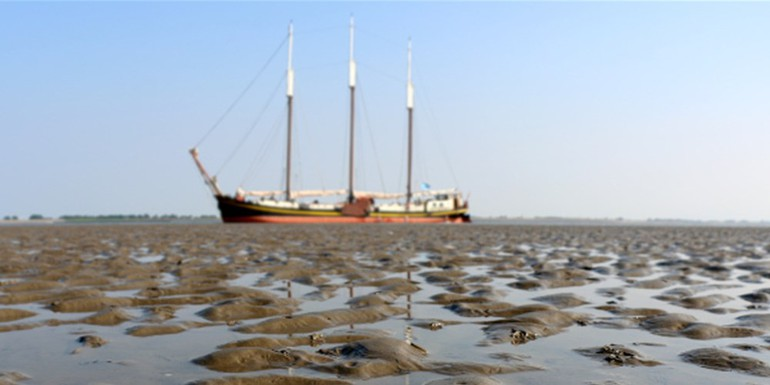 Droogvallen-Wad-Ambiance-700x300