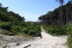 Thumbnail 2 of Walking tour over the island Terschelling